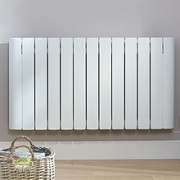 Electrorad Vanguard Electric Radiators